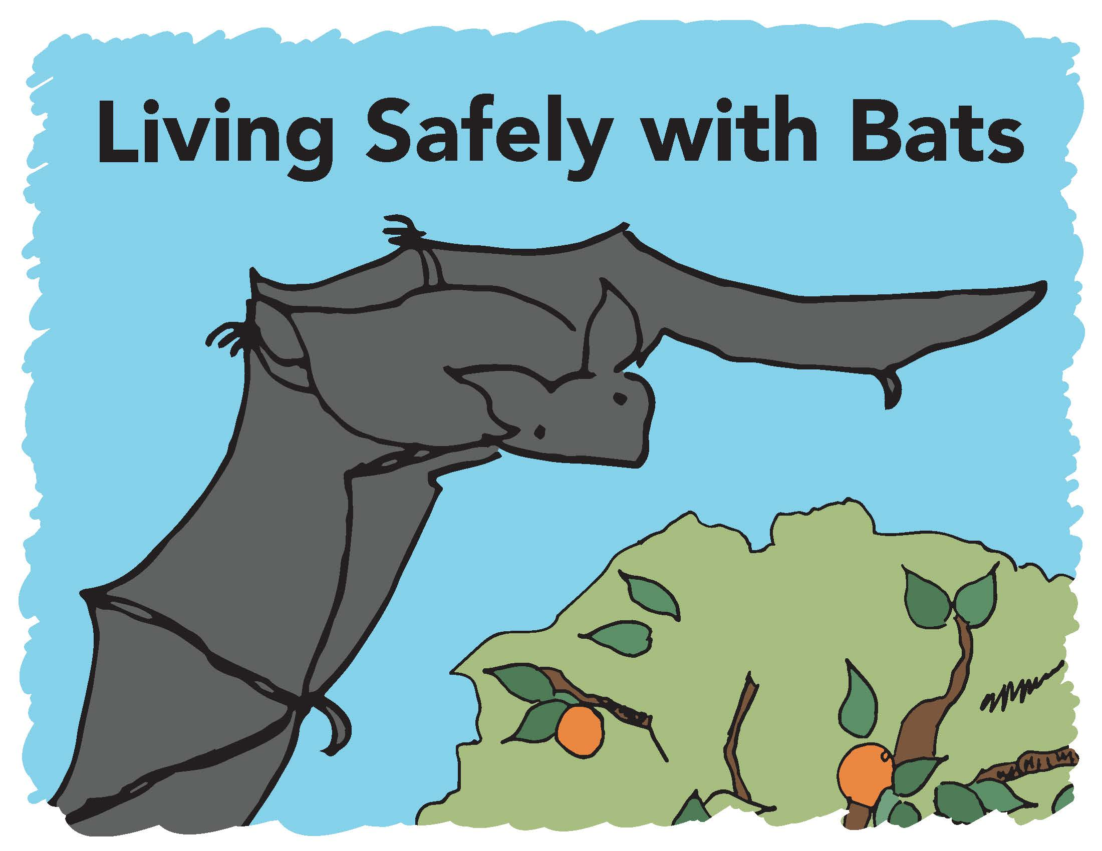Living Safely with Bats - English